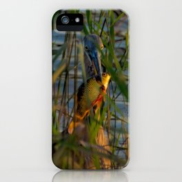 BLUE HERON'S FRIDAY SUNDOWN FISH FEAST iPhone Case