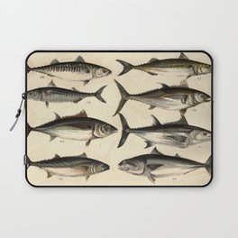 Vintage Illustration of Tunas, Mackerels & Bonitas Laptop Sleeve