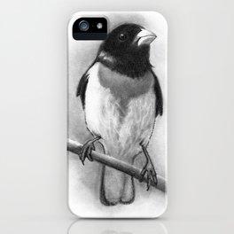 Bird: Grosbeak: Pencil Drawing iPhone Case