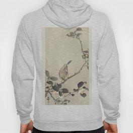 Bunting on blossom branch - Ohara Koson (1900 - 1930) Hoody
