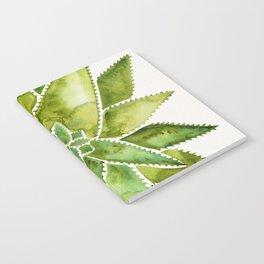 Aloe Vera – Green Palette Notebook