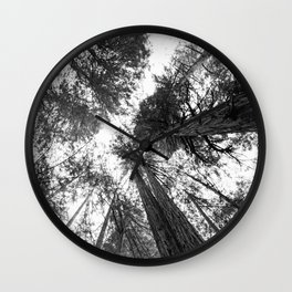 Muir Woods - California Wall Clock