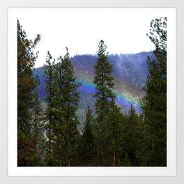 Over the rainbow through the forest... Art Print