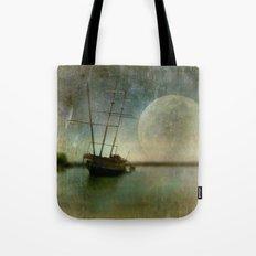 Shipwreck on Lake Ontario Tote Bag