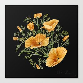 California Poppies on Charcoal Black Canvas Print