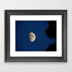 Beyond the Trees Framed Art Print