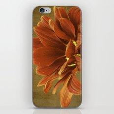Vintage Chrysanthemum iPhone & iPod Skin