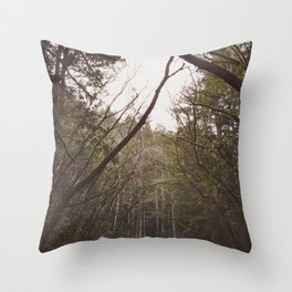 T r e a s  Throw Pillow