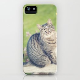 In a past life... iPhone Case