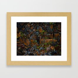 Mother of Thousands Framed Art Print