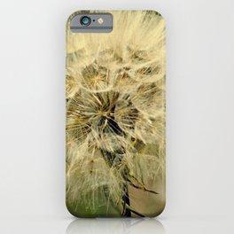 Dandelion   Make a wish iPhone Case