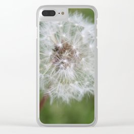 Dandelion in the Fluff Stage Clear iPhone Case