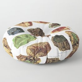 Vintage Gems And Minerals Floor Pillow