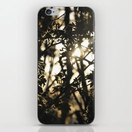 Silhouette iPhone Skin