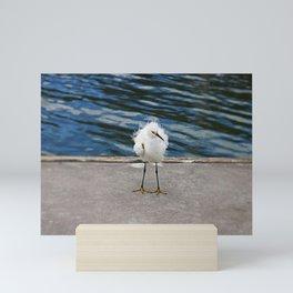 Floating on the Breeze Mini Art Print