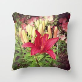 Asiatic Lilly Throw Pillow