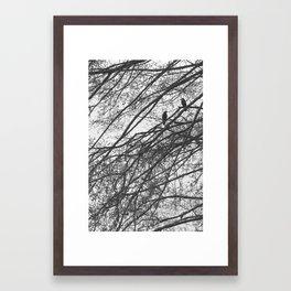 A Morning Conversation Framed Art Print