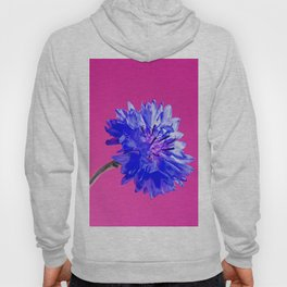 Blue fresh cornflower on the pink background Hoody