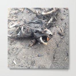 Ominous Beach Squirrel Metal Print
