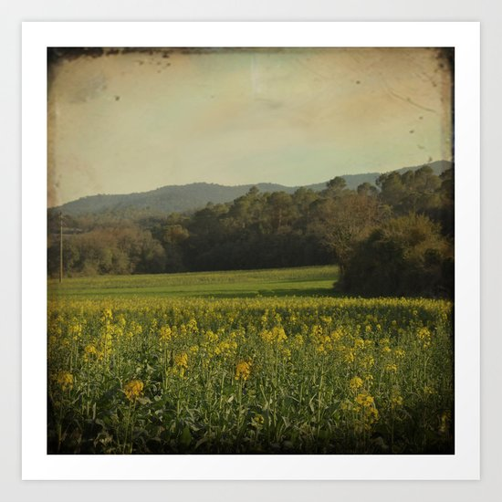 Once Upon a Time a Field of Flowers Art Print