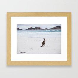 Beach-Kangaroo II Framed Art Print