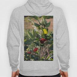 Milk weed and red berries Hoody