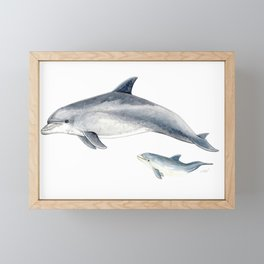 Bottlenose dolphin Framed Mini Art Print