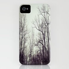 Tree branches in the sky iPhone (4, 4s) Slim Case