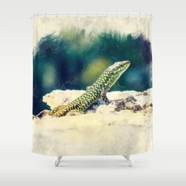 Erice art 11 Podarcis sicula Shower Curtain