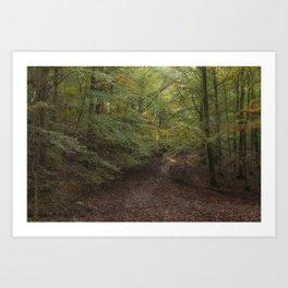 Autumn on Bradley Hill Art Print