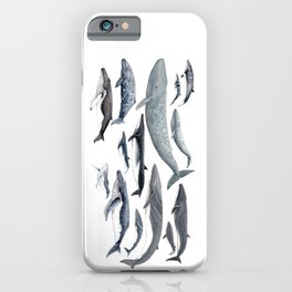 Whale diversity iPhone Case