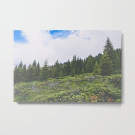 Wild Forest Hill Metal Print