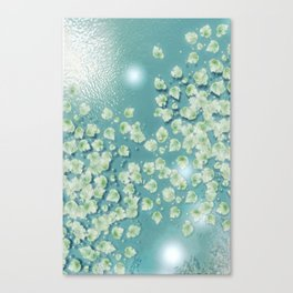 Waterlily Fields Forever Canvas Print