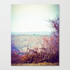 These Hills Canvas Print