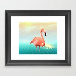 Sunset Flamingo Framed Art Print