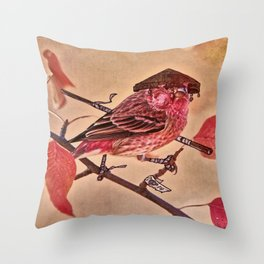 Birds In Armor 3 Throw Pillow