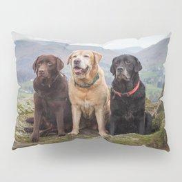 Labradors Pillow Sham