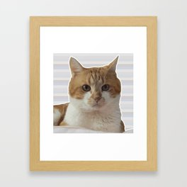Red cat on a striped background. Framed Art Print