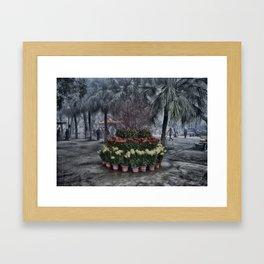 Lantau Island Flowers Framed Art Print