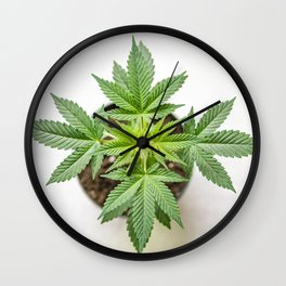 Marijuana Landscape Wall Clock