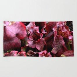 Carnivorous plant #1 Beach Towel