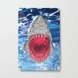 Shark Week Metal Print