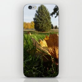 Last Vestiges of Fall iPhone Skin