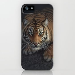 Crouching Tiger iPhone Case