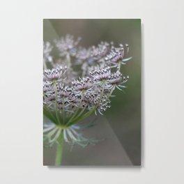 Wildling - No. 1 Metal Print
