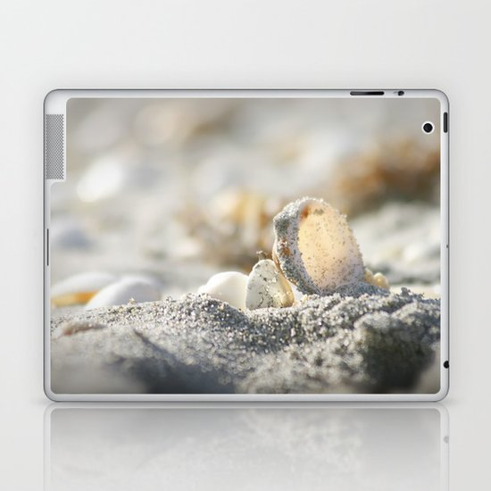 A Shell Laptop & iPad Skin