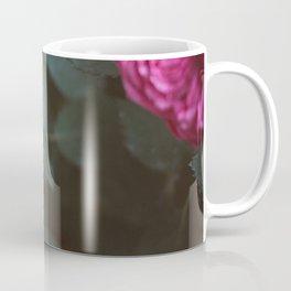 Roses blossom Coffee Mug