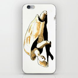 Shuffles the Aldabra Tortoise iPhone Skin