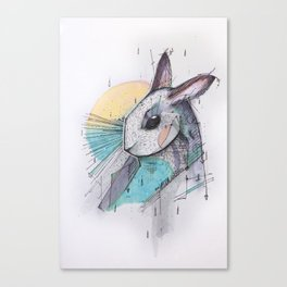 I´ VE JUST SEEN A FACE Canvas Print