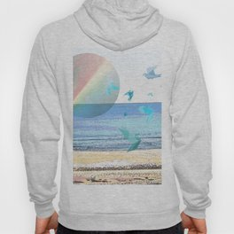 CHASING DOWN A DREAM Hoody
